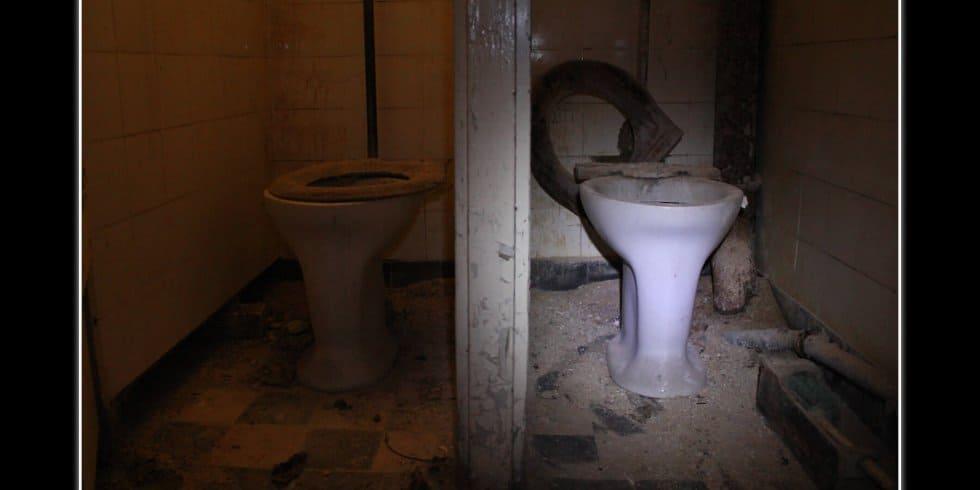 Toilet (Bild: Daniel Höly)