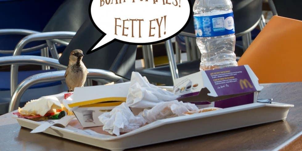 Manch einer wäre bei der Fettsteuer gerne vogelfrei (Bild: eigenes)