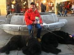 Adventskalender Tag 21 - Martin - Neufundländer Hunde (Bild: eigenes)